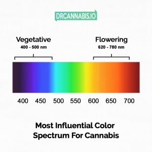 Color spectrum for cannabis plants