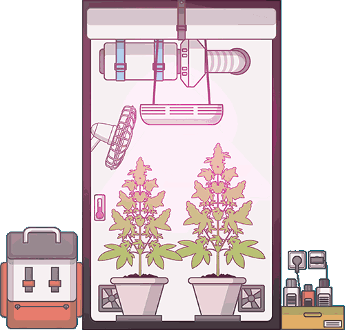 grow-tent-setup-complete-guide